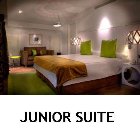 Habitaciones Junios Suite