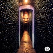 Botellero Subterraneo