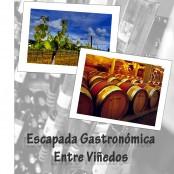Escapada Gastronómica entre viñedos