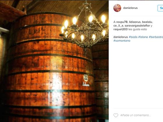 Bodegas del Somontano en Instagram