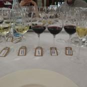 Cena Maridaje Restaurante San Ramón & Bodegas Enate: Selección de vinos