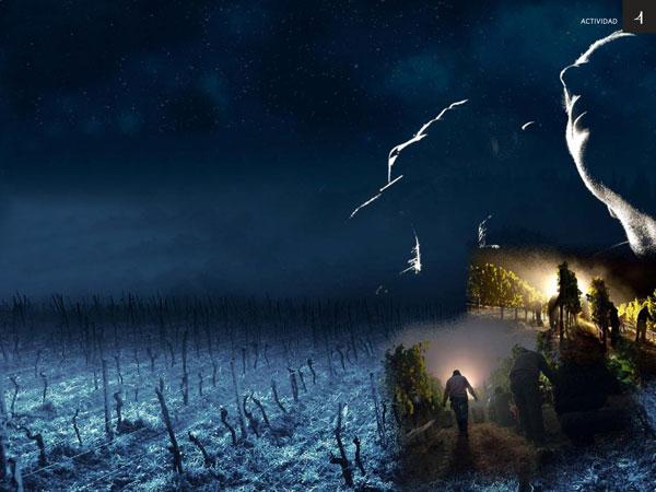 Visita nocturna a Bodega Pirineos con aperitivo y música