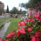 Río Vero a su paso por Barbastro